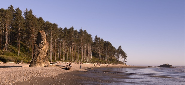 Rudy Beach on the coast of Washington state.