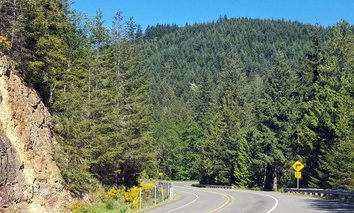 Washington State Route 7 winds its way south toward Morton, near Mount Rainier.