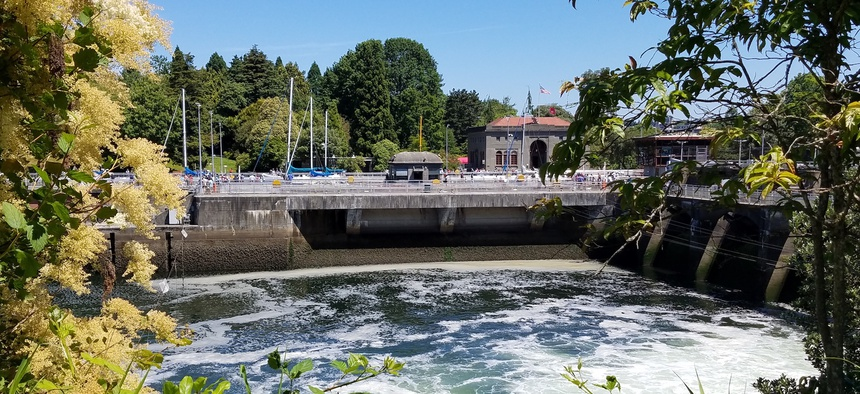The Hiram M. Chittenden Locks in Seattle.