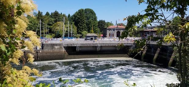 The Hiram M. Chittenden Locks in Seattle.