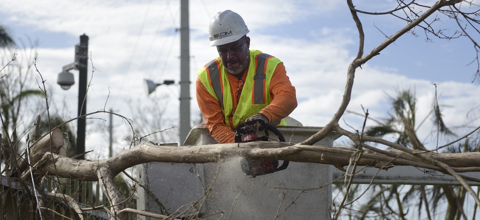 A Liberty Cable worker cuts branches to restore fiber optic lines three days after the impact of Hurricane Maria in Carolina, Puerto Rico