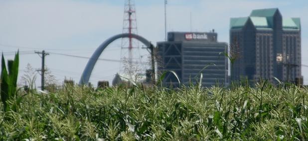 An urban farm in St. Louis, Missouri.