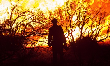 A hand crew member starts a backfire along Baldy Mesa Road late Friday, July 17, 2015, as the North Fire continues to burn near Interstate 15 in the Cajon Pass in San Bernardino County, Calif.