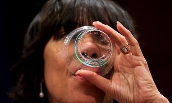 Flint Mayor Karen Weaver at a U.S. House committee hearing on the Flint water crisis in Washington D.C.