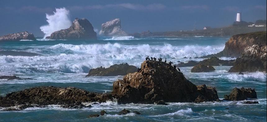 Piedras Blancas in San Luis Obispo County, California