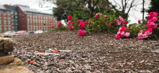 Syringes spotted in the garden area at the entrance to Paul Revere Park in Boston.