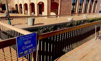 Walking along Main Street in downtown Walla Walla, you might miss Mill Creek.