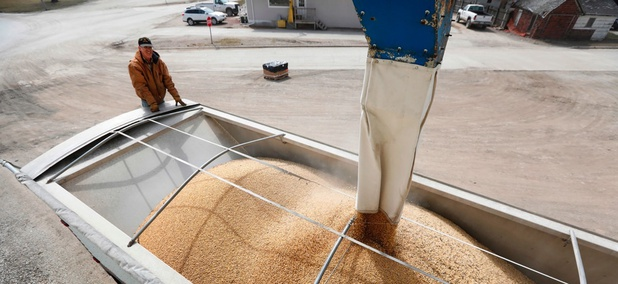 Terry Morrison watches as soybeans are loaded into his trailer at the Heartland Co-op on April 5 in Redfield, Iowa.