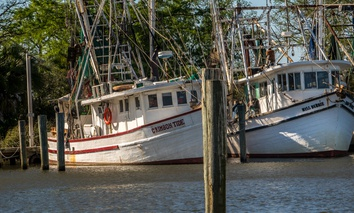 Shrimp boats in Apalachicola Bay in March 2018.