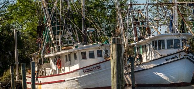 Shrimp boats in Apalachicola Bay in March 2018.