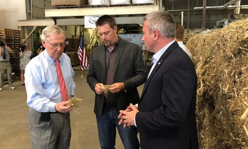 Senate Majority Leader Mitch McConnell inspects a piece of hemp taken from a bale of hemp at a processing plant in Louisville, Ky., Thursday, July 5, 2018. McConnell is leading the push in Congress to legalize hemp.