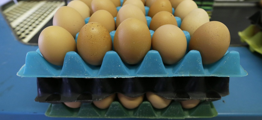 Eggs laid by cage-free chickens sit in a holder after being sorted by Francis Blake on his organic farm, Wednesday, Oct. 21, 2015, near Waukon, Iowa.