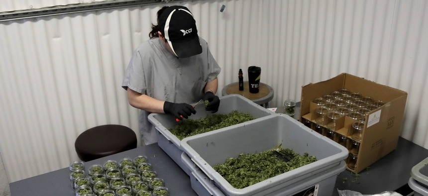 In this Friday, March 22, 2019 photo, Paige Dellafave-DeRosa, a processing supervisor at Compassionate Care Foundation's medical marijuana dispensary in Egg Harbor Township, N.J., sorts marijuana buds.