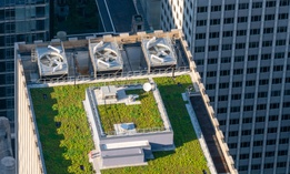 The bill would require rooftops on new buildings to contain greenery, solar panels, small wind turbines or some combination of the three.