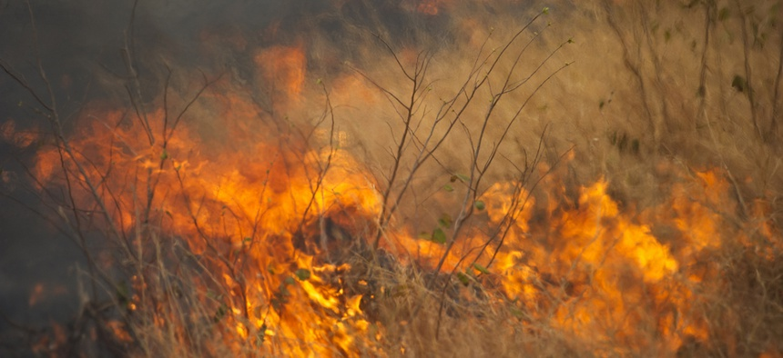 Wildfires are more likely due to invasive grass species.