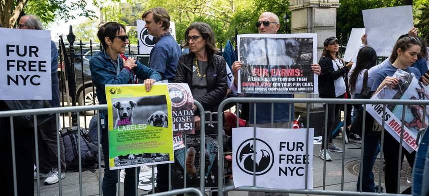 A protest against fur in New York.