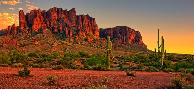 Trump's Border Wall Threatens an Arizona Oasis
