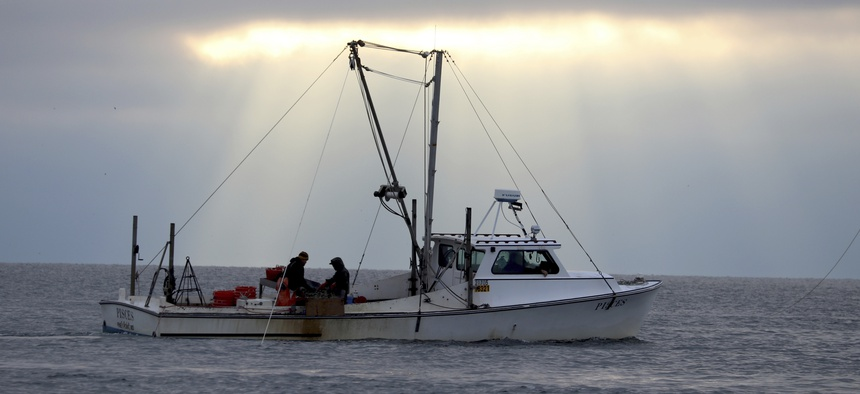 In a Tuesday, Nov. 19, 2019 photo, watermen dredge for oysters on the Chesapeake Bay in southern Maryland near Ridge, Md.